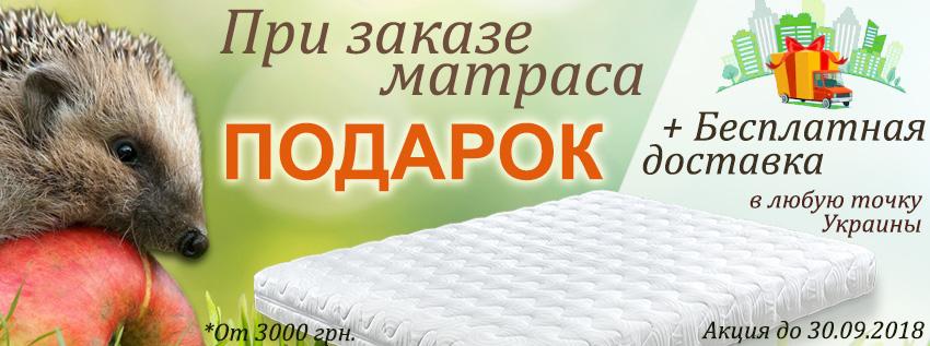Матрас-с-подарком-и-бесплатной-доставкой-ежик
